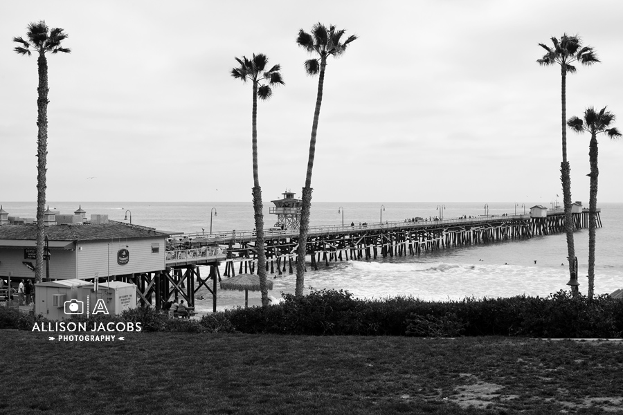 San clemente california beach in black white
