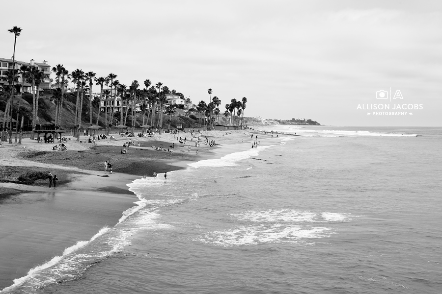 Black And White California Beach Pictures